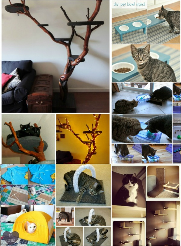 20 Purrfect DIY Projects for Cat Owners (Brilliant Projects)