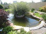 Глиняный пруд – Пруд с глиняной гидроизоляцией|Глава 3 Пруды и не только | Читать онлайн, без регистрации