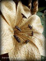 Джут растение фото – Вся композиция выполнена из джутовых ниток.Часть джута была отбелена для листиков цветка. фото 3   джут,веревка,мешковина   Pinterest